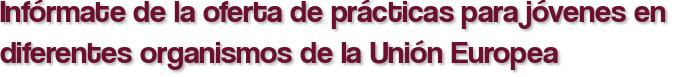 Infórmate de la oferta de prácticas para jóvenes en diferentes organismos de la Unión Europea