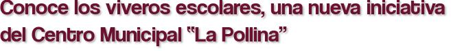 """Conoce los viveros escolares, una nueva iniciativa del Centro Municipal """"La Pollina"""""""