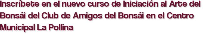 Inscríbete en el nuevo curso de Iniciación al Arte del Bonsái del Club de Amigos del Bonsái en el Centro Municipal La Pollina