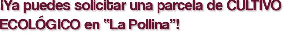 """¡Ya puedes solicitar una parcela de CULTIVO ECOLÓGICO en """"La Pollina""""!"""