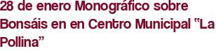 """28 de enero Monográfico sobre Bonsáis en en Centro Municipal """"La Pollina"""""""