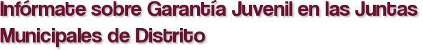 Infórmate sobre Garantía Juvenil en las Juntas Municipales de Distrito