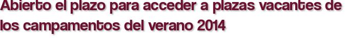Abierto el plazo para acceder a plazas vacantes de los campamentos del verano 2014